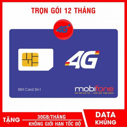 SIM 30GB